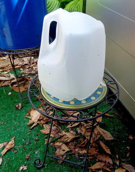 DIY way to catch rain water without a rain barrel