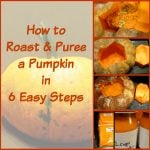 Easy Steps on How to Make Pumpkin Puree and Freeze Pumpkin