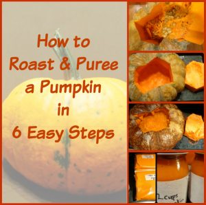 How to roast a pumpkin 6 easy steps