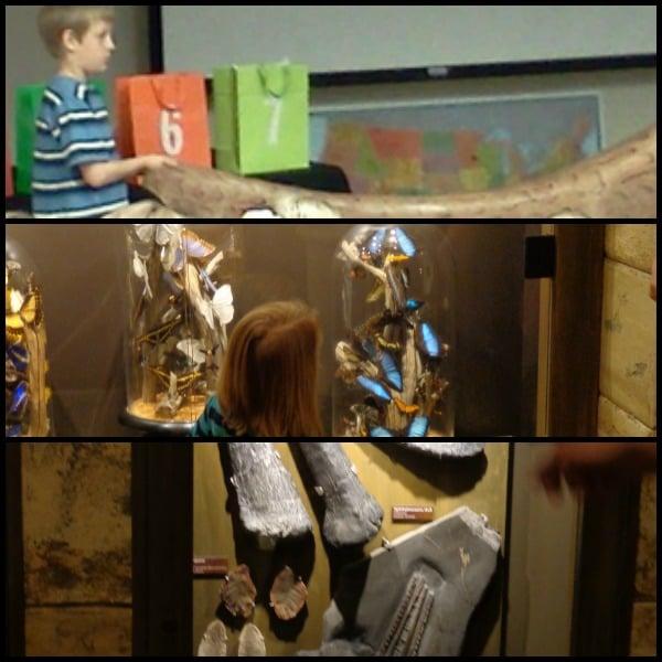 creation museum workshop