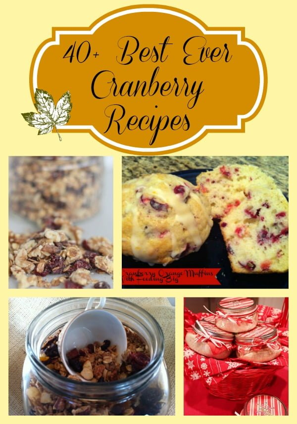 40 cranberry recipes