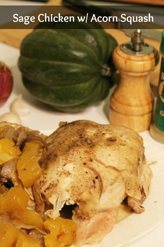 slow cooker sage chicken with acorn squash