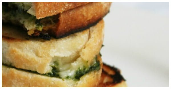 grilled cheese close up