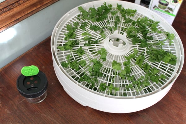 how to preserve herbs by drying with Heather at realthekitchenandbeyond.com