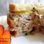 Strawberry Kale Chicken Salad Recipe