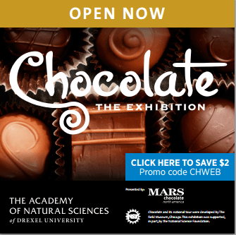 Chocolate 250