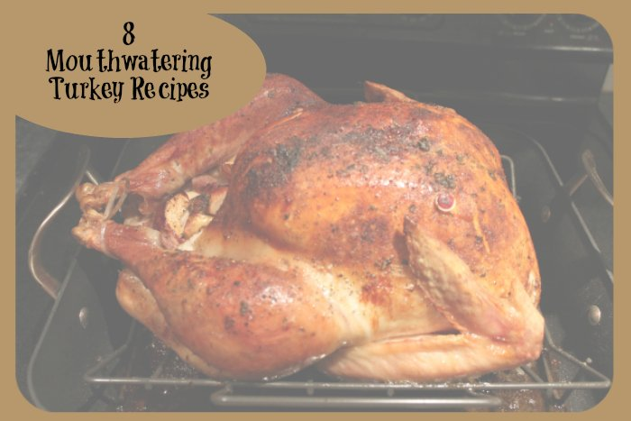 8 turkey recipes for thanksgiving | www.realthekitchenandbeyond.com