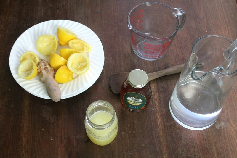 Blueberry Honey Lemonade Ingredients - Real: The Kitchen and Beyond