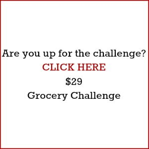 $29 Grocery Challenge