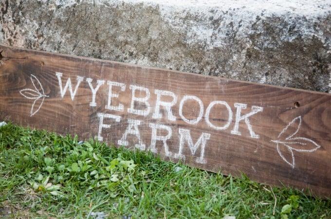 Wyebrook Music Festival