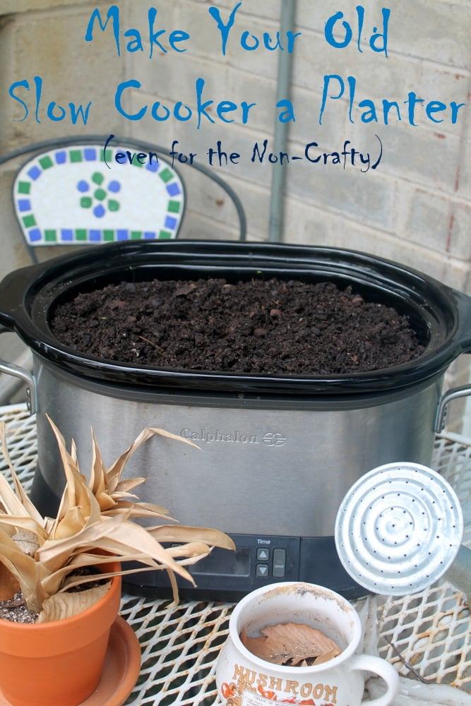 DIY Planter: Upcycle your broken slow cooker  - Real: The Kitchen and Beyond