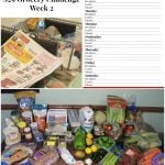 $29 Grocery Budget Challenge: Meal Plan 2