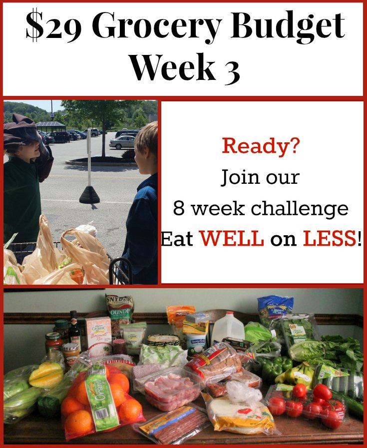 29 Dollar Grocery Budget Meal Plan 3 - Real: The Kitchen and Beyond