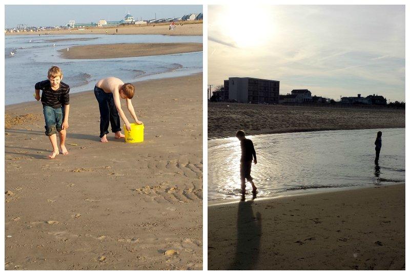 Lewes Beach Winter Beach Day