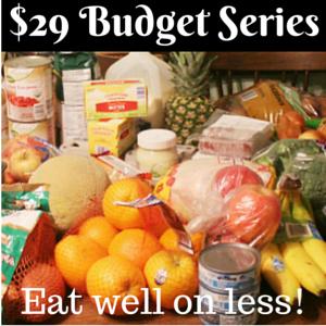 $29 Budget Series