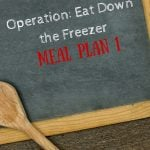 Operation Eat Down the Freezer: Meal Plan 1
