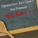 Operation Eat Down the Freezer: Meal Plan 2 and 3