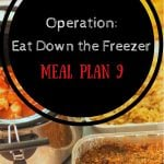 Operation: Eat Down the Freezer Meal Plan 9