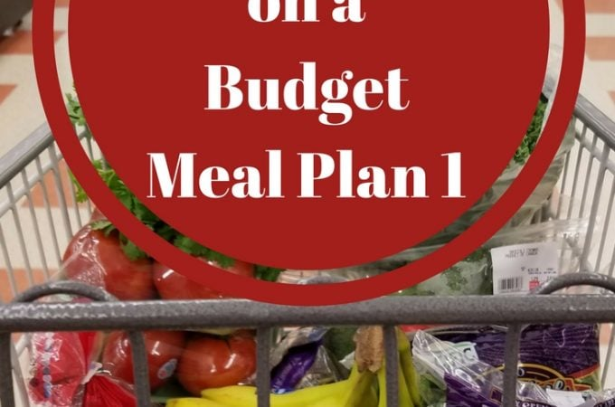 Building a Stockpile Meal Plan 1