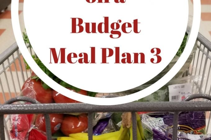 Building a Stockpile Meal Plan 3