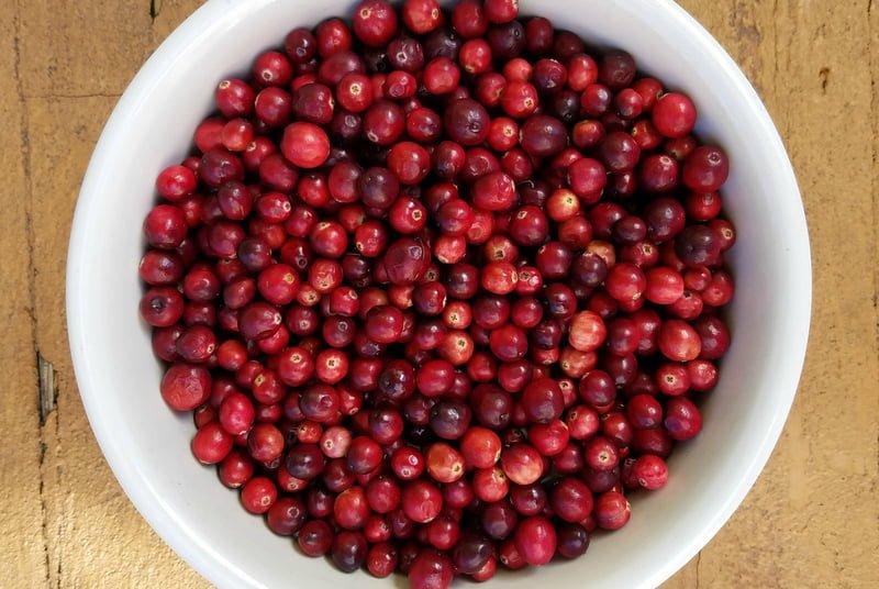 Everything You Need to Know About Cranberries (and then some)