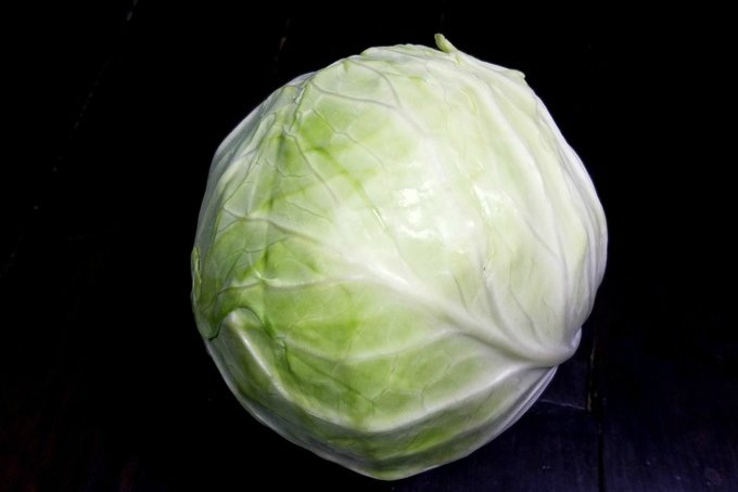 Everything You Need To Know About Cabbage