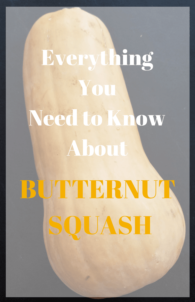 Everything You Need Know About Butternut Squash