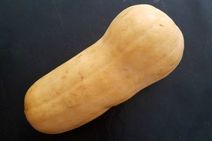 Facts about Butternut Squash