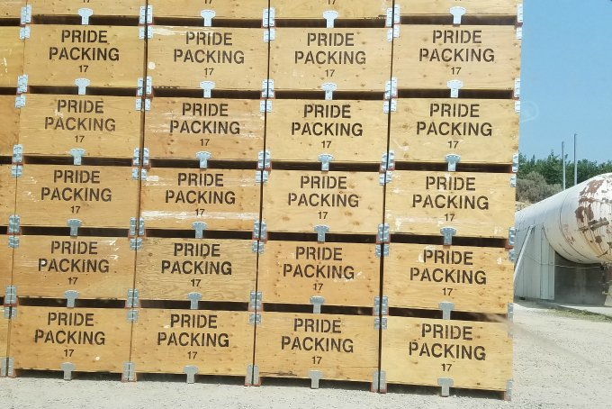 Packing Crates Pacific Northwest WA Stone Fruit