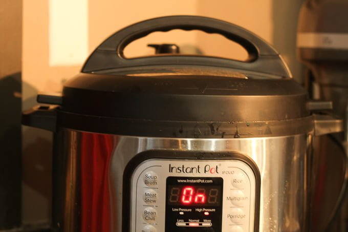 whats for dinner tonight instant pot meal