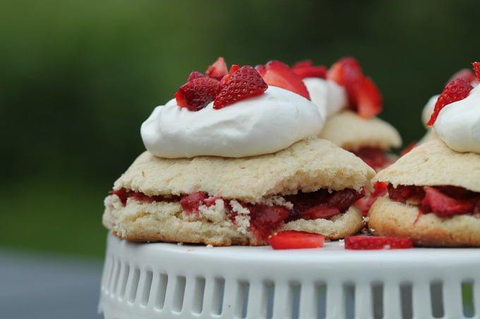 Honey Roasted Strawberry Rhubarb Shortcake Close-up